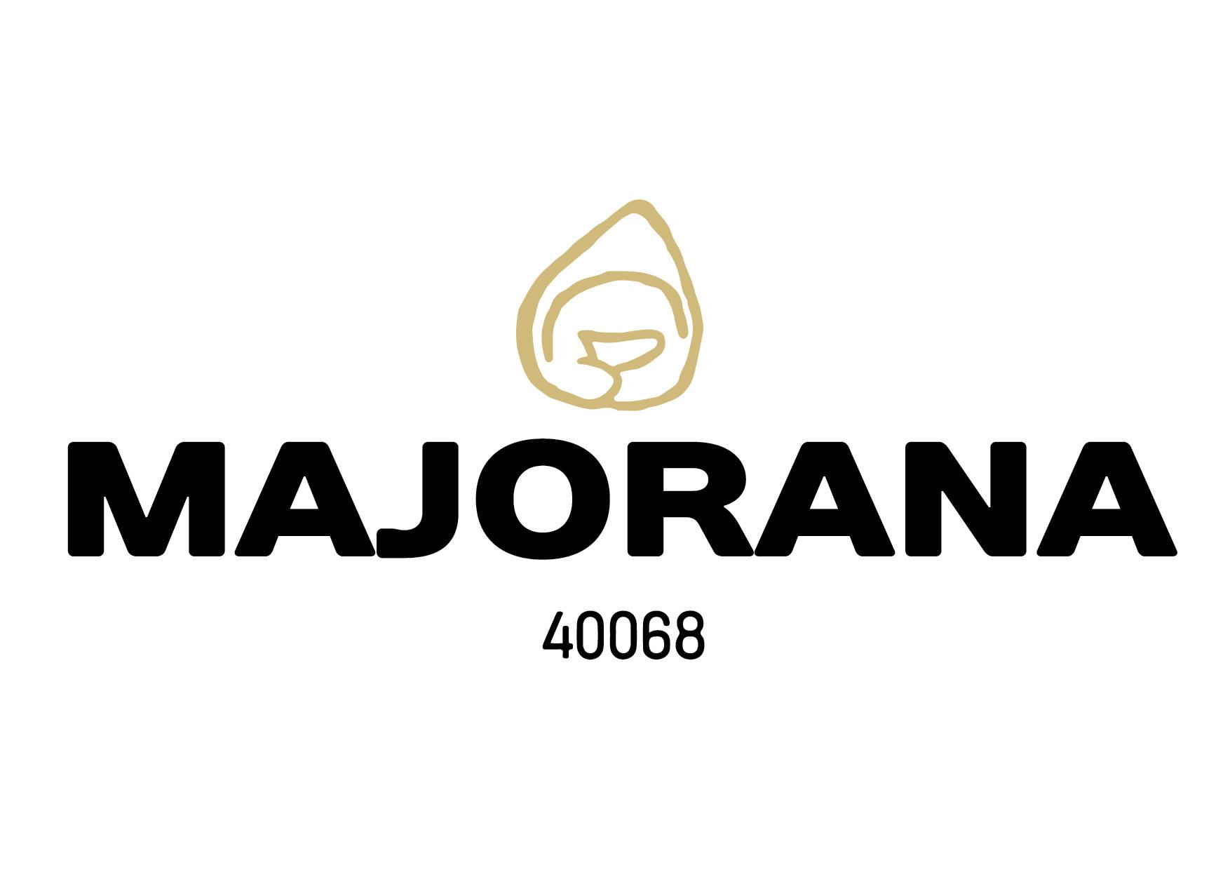 majorana_logo.jpg